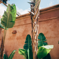 Käytännön vinkkejä Marrakechiin